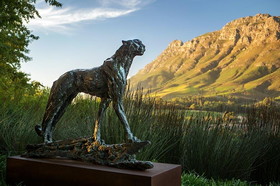 Cape Winelands, Whale Coast and kwaZulu-Natal