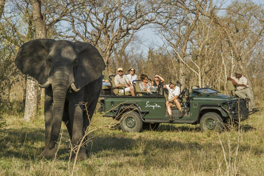 Cape Town, Winelands and Sabi Sands