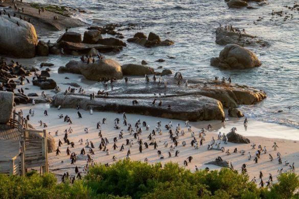 Tintswalo Boulders