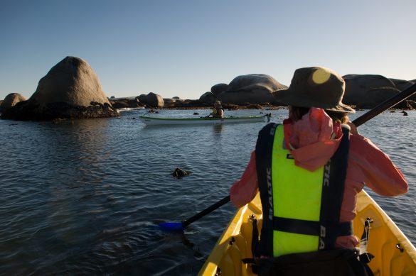 Cape Columbine kayaking