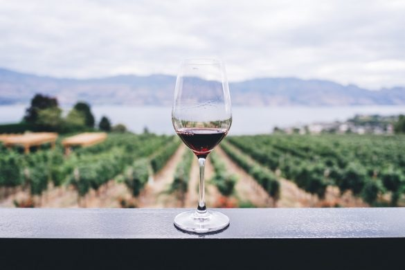 Great big wine survey